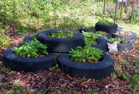 Tire Garden Design on tire art, tire landscaping, tire jewelry, tire fences, tire ponds, tire walls, tire water features, tire concrete, tire trees, spring designs, roof garden designs, tube garden designs, tire furniture,