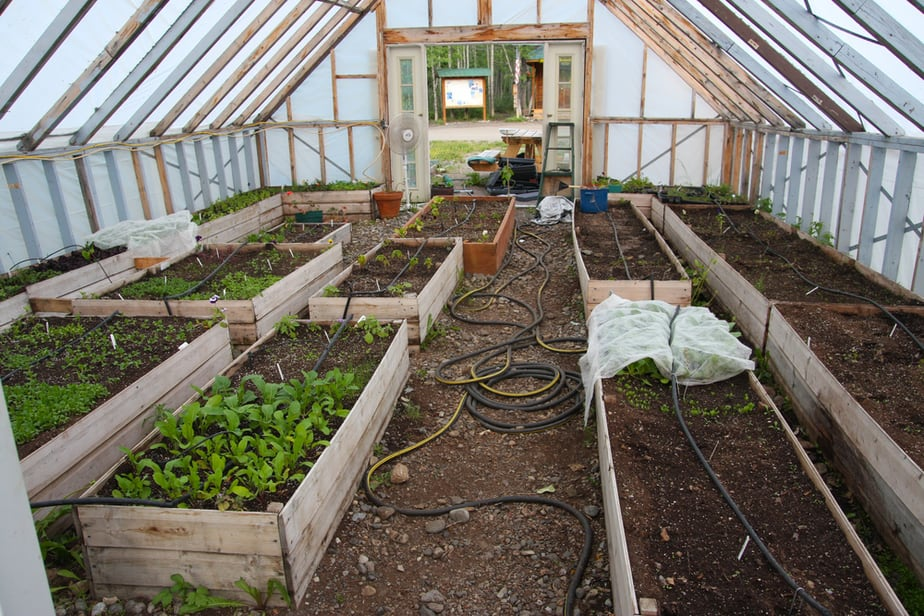 Greenhouse Ideas for Year Round Gardening in 2020: Own The ...