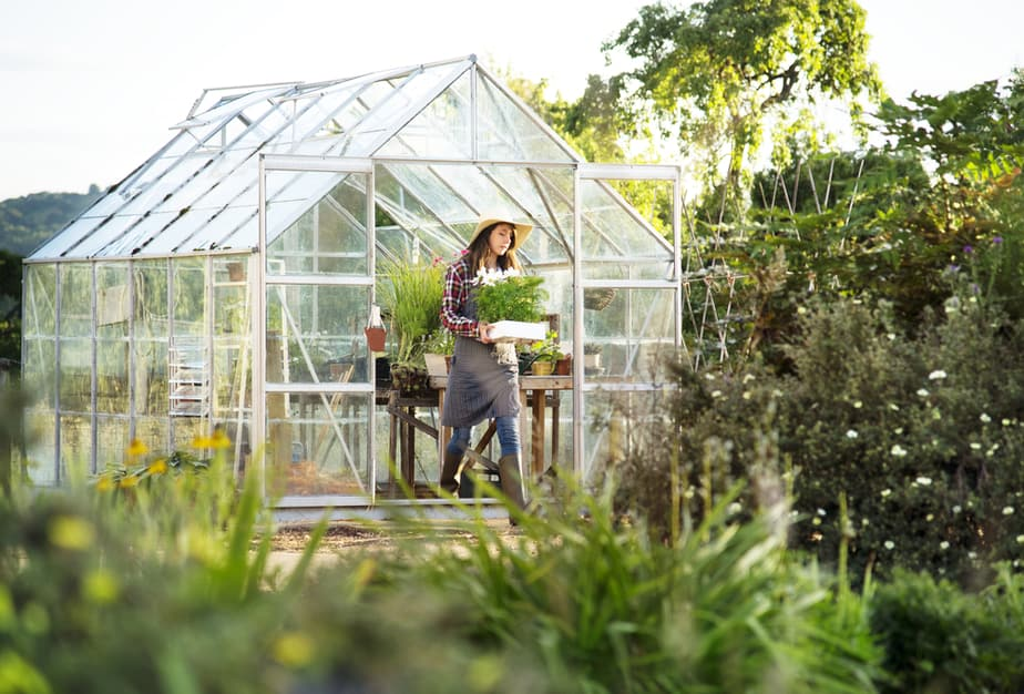 Greenhouse Ideas for Year Round Gardening in 2019: Own The Yard on backyard windmill plans, backyard house plans, royal greenhouses of laeken, backyard gazebo plans, backyard permaculture plans, backyard studio plans, backyard swing plans, backyard organic gardening, backyard pergola plans, sustainable gardening, seawater greenhouse, backyard pool plans, backyard shop plans, backyard home, backyard playhouse plans, cold frame, backyard chapel plans, backyard shed plans, backyard golf course plans, green wall, backyard gym plans, backyard labyrinth plans, backyard garage plans, backyard fireplace plans,