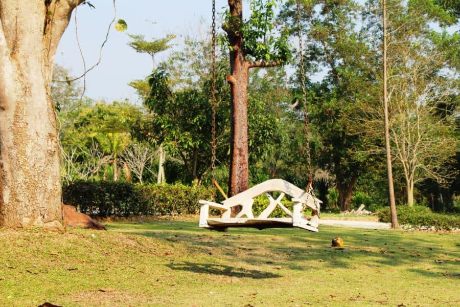 outdoor tree swing ideas