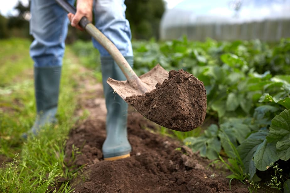 The Best Shovel for Digging 2020: Own The Yard