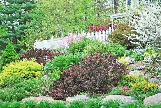 17 Hillside Landscaping Ideas to Beautify Your Hillside ...