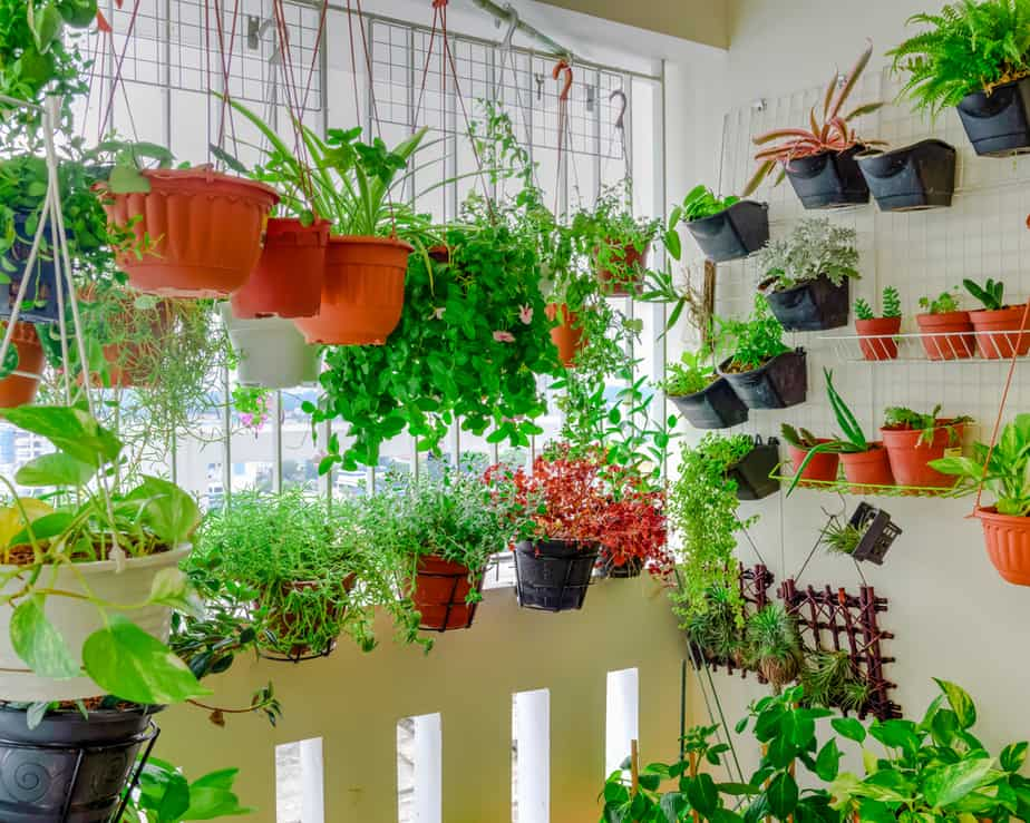 15 Inspiring Balcony Gardening Ideas That Are A Must 2020 Own The Yard