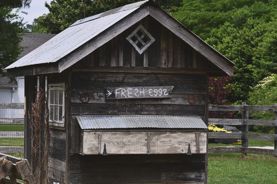 27 Best Chicken Coop Ideas For Cute Country Living 2020