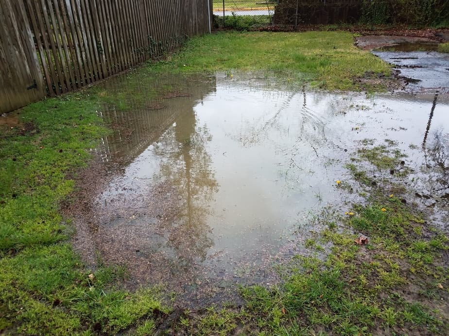Landscaping for Poor Drainage + How to Identify the Issues ...